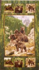 Bear Country - Panel