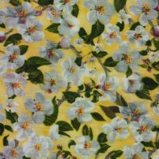 Weiße Blüten auf Gelb
