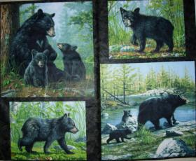 Woodland Bears, Panel