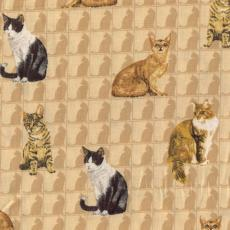 Cats Allover, Beige