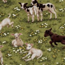 Springtime, Lambs, Grün