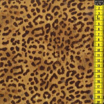 Safari Cats - Leoparden Fell