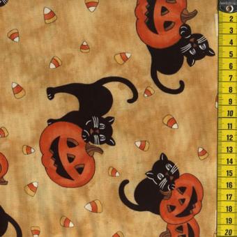 Cats and jack o lanterns, Tan