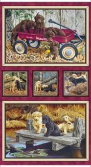 Labrador-Able, Hunde, Panel, Bordeaux