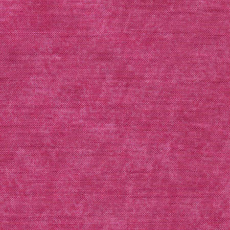 Spraytime Fuchsia