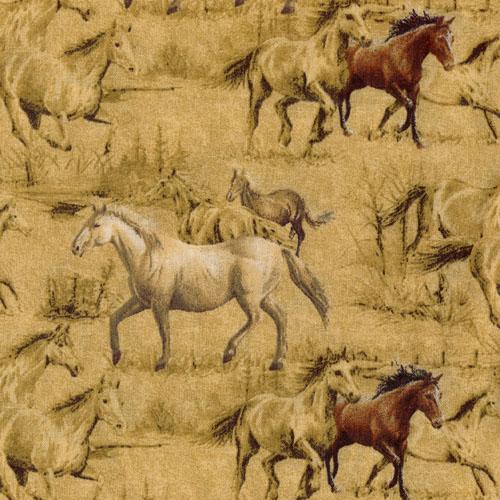 Hautmann Horses, Pferde, Tan